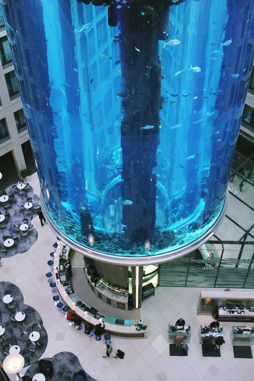 Aquadom Radisson Blu Berlin