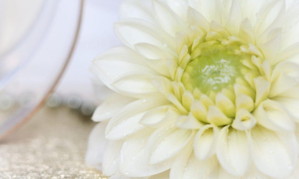 gewinnspiel-michael-buble-parfum-damenduft-by-invitation-8