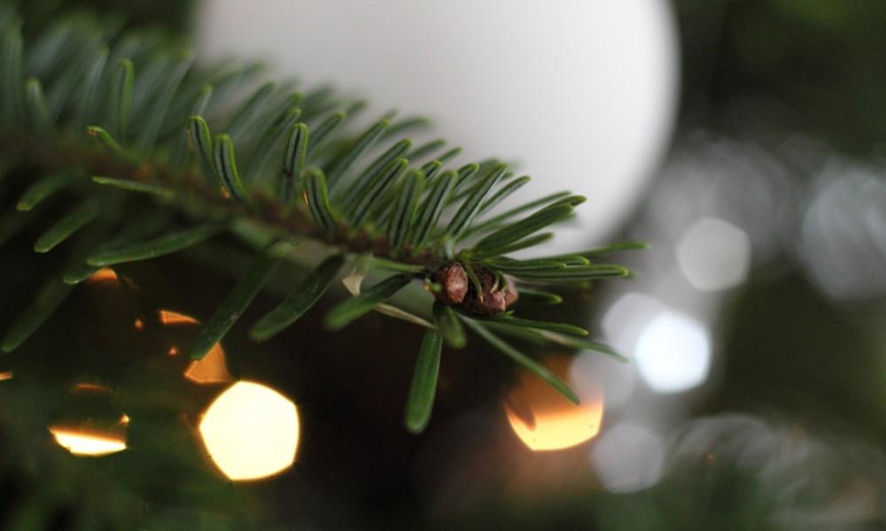 Christmas0003