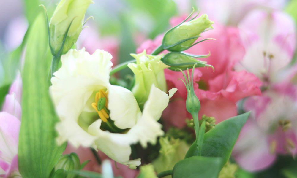 blumenstrauss-bloomy-days-goldregen-inkalilie-6